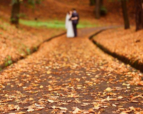 Autumn Locations Fall wedding decorations