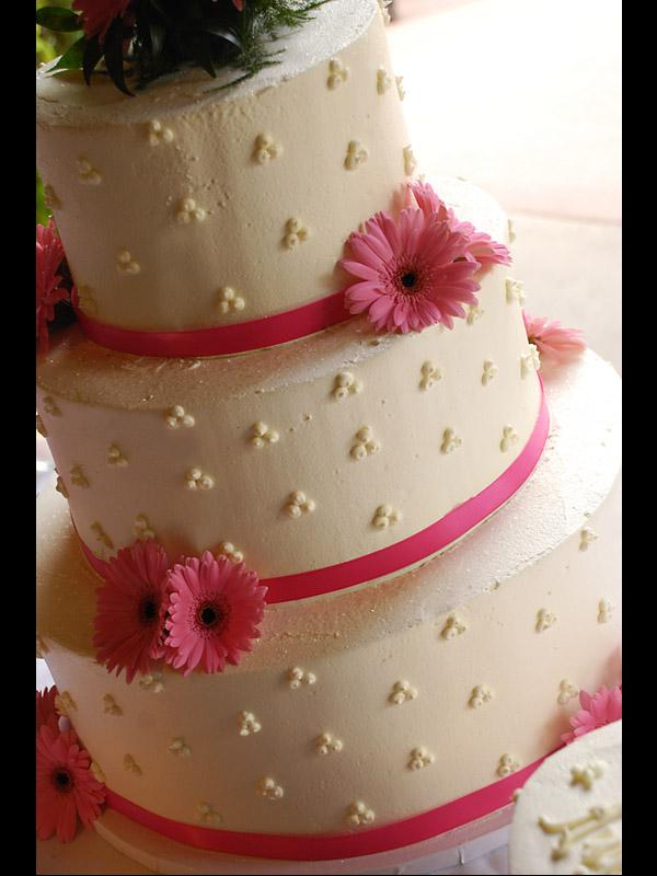 star dot cake