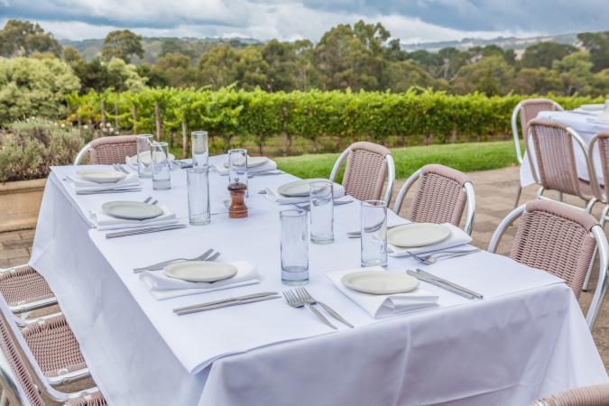 Table in vineyard