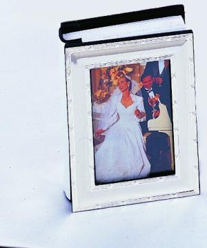 Silver Reed and Ribbon Mini Photo Album