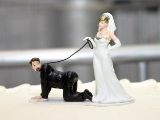 Funny wedding cake toppers funny wedding cake toppers junglespirit Choice Image