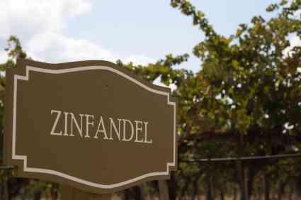 Sonoma County Zinfandel Wine