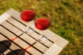 Enjoy the adventure of Spanish wine.