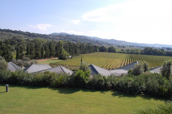 Ca' Marcanda Winery