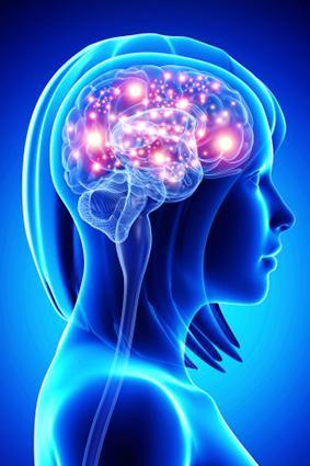 Active Brain Illustration