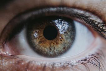 https://cf.ltkcdn.net/addiction/images/slide/250517-850x567-9_Eye_pupil.jpg