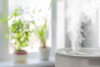 Humidificador niebla fria