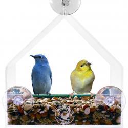 Un comedor de pájaros para la ventana