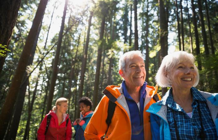 Pareja de ancianos de excursión en bosques soleados