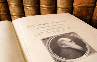 Antique copy of On the Origin of Species by Charles Darwin