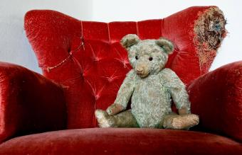 Steiff Bears: Values Behind the Captivating Collectibles