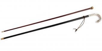 Two Walking Sticks 19-20 century