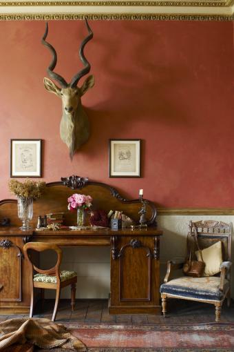 Elegant furniture in drawing room
