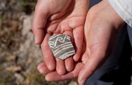 Ancient Pottery Shard