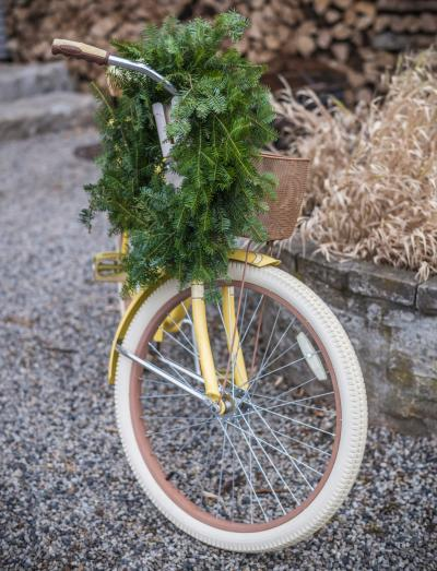 antique bicycle with Christmas wreath