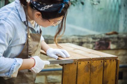 Woman shaping wood with rasp