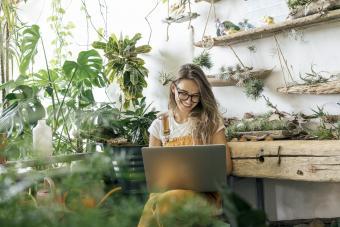10 Best Indoor Plants for a Beautiful, Healthy Australian Home
