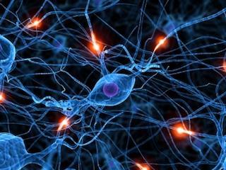 Active neuron