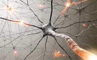 Mirror Neurons As the Cause for Autism