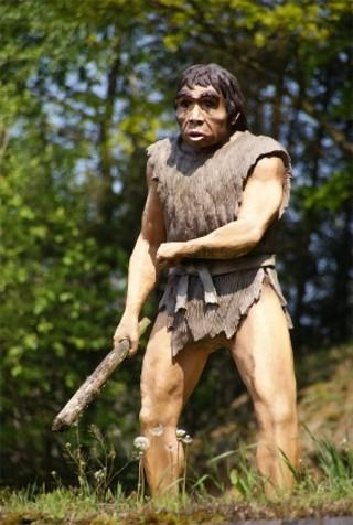 Neanderthal Theory of Autism
