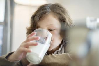 Can Camel's Milk Help Those With Autism or Is It Just a Fad?