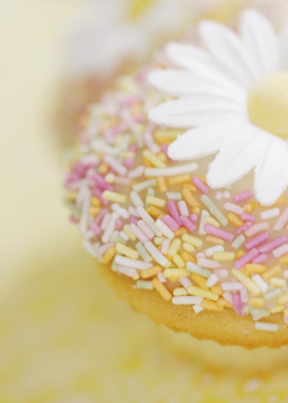 Intro-Daisy-Cupcake.jpg