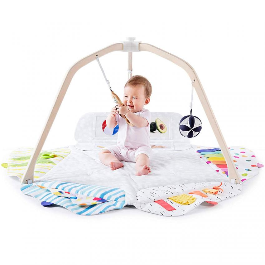 https://cf.ltkcdn.net/baby/images/slide/243287-850x850-10-play-gym.jpg