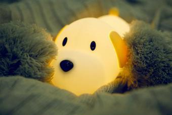 Papa Puppy Night Light