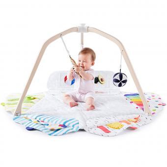 https://cf.ltkcdn.net/baby/images/slide/243287-850x850-10-play-gym.jpg