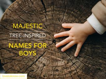 Majestic tree-inspired names for boys