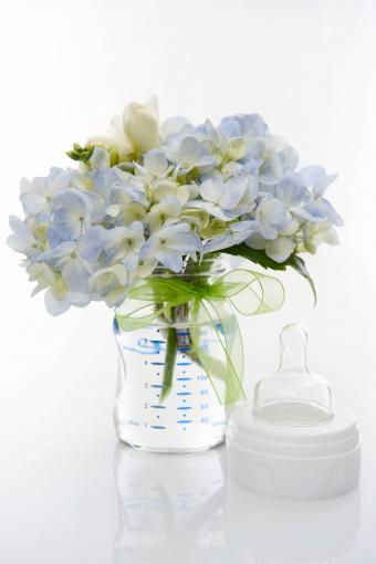 Hydrangea in baby bottle