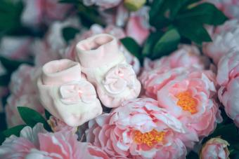 Pink booties in the colors of the peonies