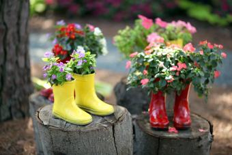 Cute rain boots used as flower planters