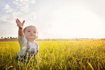 Baby sitting in Grass reaching to the Sky