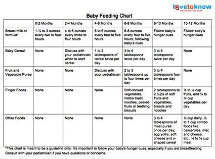 How much food should you feed your baby