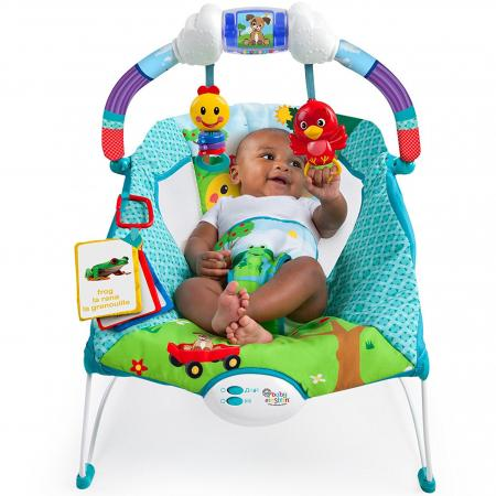 Baby Einstein Caterpillar's Day at the Park Bouncer