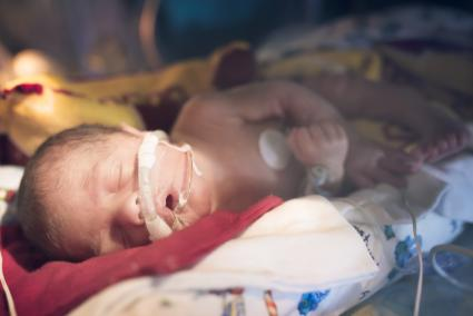 Premature Baby in NICU sleeps in his Isolette