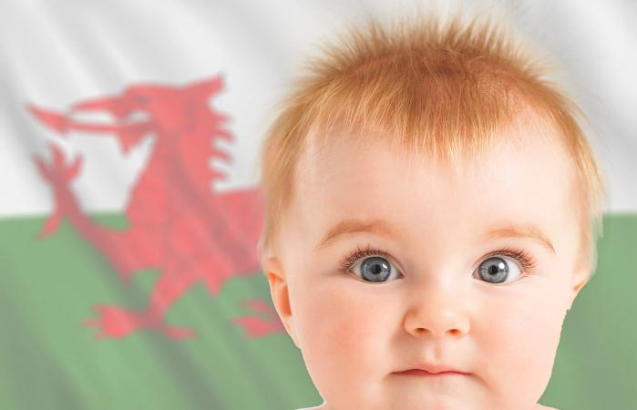 Baby with welsh flag