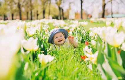 baby in green grass of tulips field
