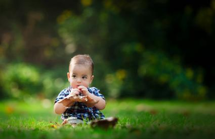 Beautiful Baby Plays with a Leaf in the Sun