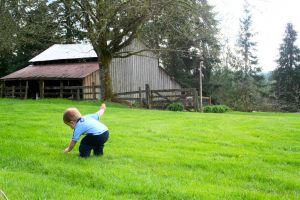 Baby playing outside on a farm