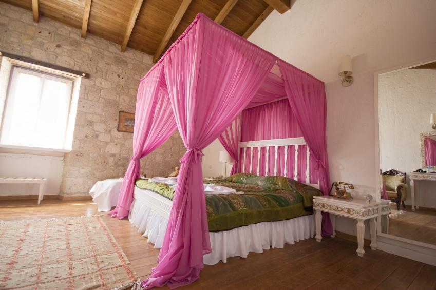 Bright Pink Bed Canopy