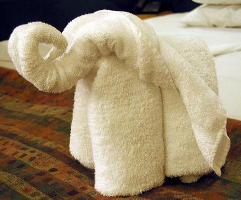 https://cf.ltkcdn.net/bedding/images/slide/212223-480x400-Towel-elephant.jpg