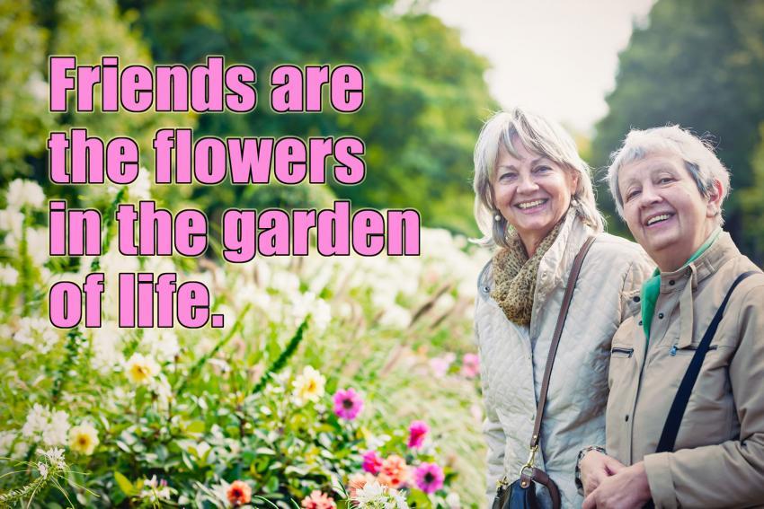 https://cf.ltkcdn.net/best/images/slide/229624-850x567-Friends-Are-The-Flowers.jpg