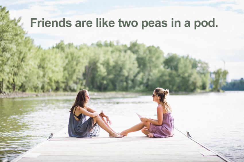 https://cf.ltkcdn.net/best/images/slide/229626-850x566-friends-are-like-two-peas-in-a-pod.jpg