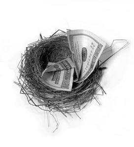 Money in nest