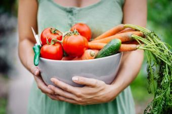 Freshly harvest vegetables