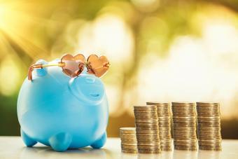 https://cf.ltkcdn.net/best/images/slide/229805-704x470-Piggy-Bank-and-Stack-of-Coins.jpg