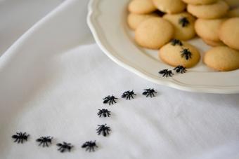 fake ant prank on cookies