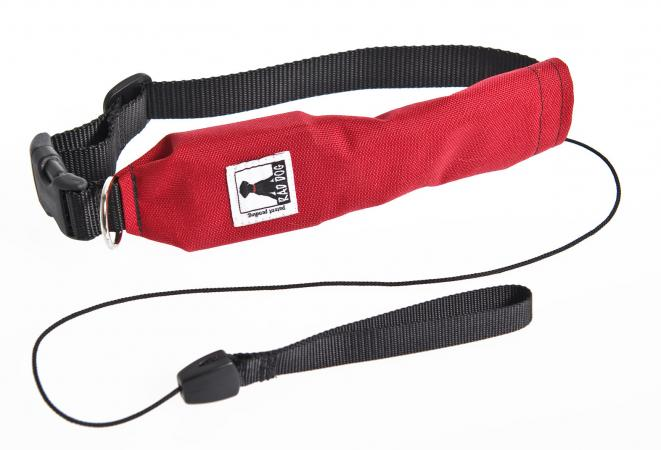 Release R Run Dog Collar